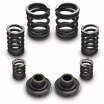 3K and 4K Governor Springs